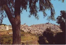 Caltagirone (CT) - 2 Cartoline: Panorama E Villa Comunale. - Catania