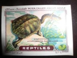 IMAGE Chocolat Peter Cailler Kohler Nestlé REPTILE REPTILES N 4 TORTUE HYDROMEDUSE - Nestlé