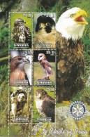 Hiboux Owls Uilen Gambia 2003 Oblitérés-Used-Gestempeld - Uilen
