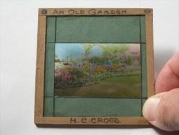 Old Garden H.C. Cross. - Identify / Identificier ( U.K. ? ) : Plaat +/- 8 X 8 Cm. ( Zie Foto Voor Details ) ! - Glasplaten