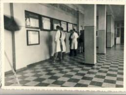 Kauno  Medicinos Institutas 1952m. - Lithuania