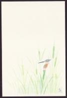 Japan Postcard, Summer Greeting 1992, Unused (jny569m)r Kingfisher Backside - Postales