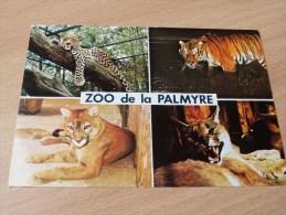 ZOO DE LA PALMYRE. LES MATHES .ROYAN. - Les Mathes