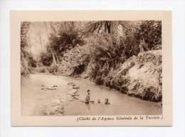 Editions Arlatte Et Cie - Cliché De L'agence Générale De La Tunisie - Oued Dans Un Oasis - Autres