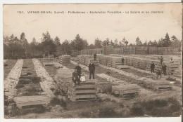 Vienne-en-Val. Pr�fontaines.Exploitation forestiere. La Scierie et les chantiers.