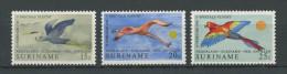 SURINAM  1971  N� 531/533  ** Neufs = MNH Superbes  Cote 2.75� Faune oiseaux birds Fauna Animaux