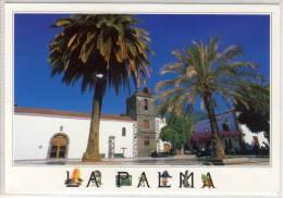 TENERIFE - LA PALMA - Los Llanos De Ariadne, Plaza De Espana - Tenerife