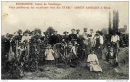 21. BOURGOGNE. Scène De Vendange-Très Animée Thème Vigne.Vins SARRAZIN à Dijon - France