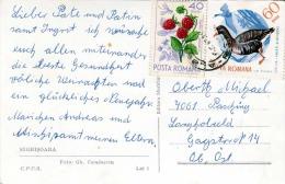 Rumänien - 2 Sondermarken Auf Ak (Kleinformat) SIGHISOARA - 1948-.... Republiken