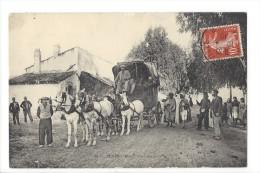 L1618 -  Ténès Les Trois Palmiers La Diligence - Algérie