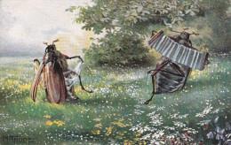 CPA.Insecte . Hanneton Humanisé. Couple D´Hannetons . Accordéon . Bandonéon. Illustrateur . M TRUBE - Insectes