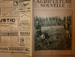 1930 L´AGRICULTURE NOUVELLE : Les CYGNES Utiles à L'assainissement; Taille Des Vignes; Congrès Du CARBONE - Libri, Riviste, Fumetti