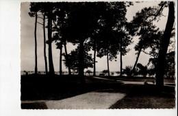 GIRONDE - ANDERNOS LES BAINS -Préventorium La Maison De L'enfance - Le Parc Rivant La Plage - Andernos-les-Bains