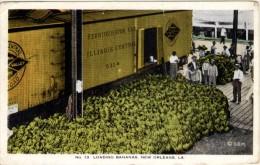 Loading Bananas - New Orleans - New Orleans