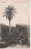 Nr.  1956,  Congo - Französisch-Kongo - Sonstige