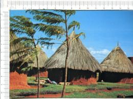 KENYA  -   HUTTES  INDIGENES  TYPIQUES - Kenya