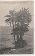 Nr.  1958,  AK  Ben  Sliman,  Casablanca - Casablanca