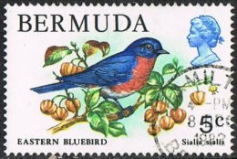 Bermuda SG389 1978 Definitive 5c Good/fine Used - Bermuda