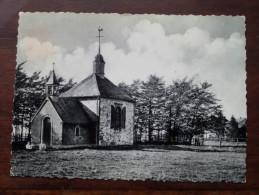 La Chapelle FISCHBACH ( Baraque Michel ) - Anno 1955  ( Zie/voir Foto Voor Details ) !! - Jalhay