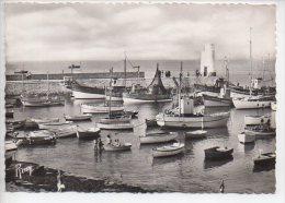 REF 192 CPSM 44 PIRIAC SUR MER Le Port - Piriac Sur Mer