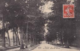 Brive La Cuierle  Allée Des Acacia - Brive La Gaillarde
