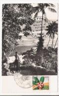 ILES WALLIS ET FUTUNA 36 - Wallis Et Futuna