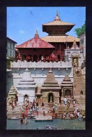 Nepal. Kathmandu. *Temple Of Pasupati Nath* Nueva. - Nepal