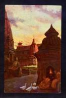 Nepal. Kathmandu. *Les Oies Sacrées D Temple De Bouddha A Patan...* Óleo De A. Druet. Circulada. - Nepal