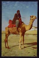 Pakistan. Karachi. *Camel Ride Karachi* Nueva. - Pakistán
