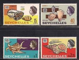 Seychelles    Sea Shells   Set  SC# 237-40  MNH** - Seychelles (1976-...)