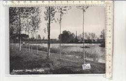 PO6930C# CREMONA - SERGNANO - SERIO : LA PALATA  VG 1968