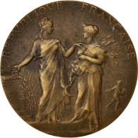 Republique Française, Médaille, Ministère De L'Agriculture - France