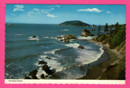 Trinidad Head - California - MIKE ROBERTS - E.F. CLEMENTS - 1980 - Trinidad