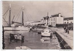 Au Plus Rapide Port Haliguen Quiberon Bateau Sirène - Quiberon