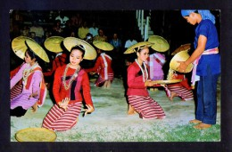 Chiang Mai. *Attractive Dancing Girls In Chiengmai* Nueva. - Tailandia