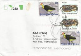 Papua New Guinea 1987 Popondetta Crab Comb-crested Jacana Water Bird Cover - Papoea-Nieuw-Guinea