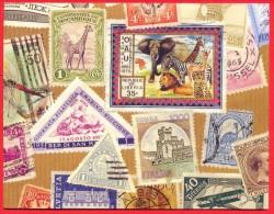 Stamps On Hallmark Card ( Liberia, San Marino, Mozambique, Italia ,Helveria, Germany, Etc ) - Cartes Postales
