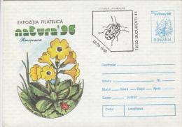 BEETLES, LADYBUG, FLOWERS, COVER STATIONERY, ENTIER POSTAL, 1996, ROMANIA - Insekten