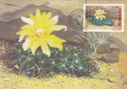 CACTUSSES, CM, MAXICARD, CARTES MAXIMUM, OBLIT FDC, 6X, 1997, ROMANIA - Sukkulenten