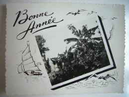 CPA Vietnam Indochine Cochinchine Annam Tonkin - Bonne Année 1949 - 1950 - Paysage Palmiers Cocoiers Bananiers - Viêt-Nam