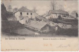 22750g CHAUMIERES - MAISONS - Hoeylaert - 1904 - Hoeilaart