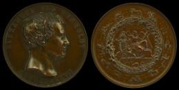 M01691 ALEXANDER VON HUMBOLDT 1897 (174 Gr) Signes Du Zodiaque Au Revers - Professionnels/De Société