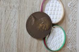 Médaille Souvenir Paul Struye  15 Ans De Présidence Du Sénat. Sans La Boite - Autres Collections