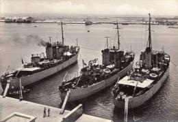 TRAPANI - Der Hafen, Drowerbooten - Trapani