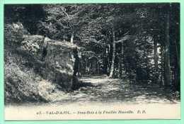 88 VAL-d'AJOL - Sous-bois à La Feuillée Nouvelle - Francia