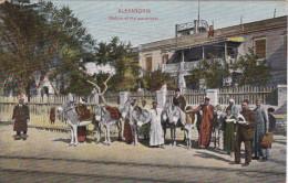 ALEXANDRIA , Egypt , 00-10s ; Station Of The Ass-drivers [Donkeys] - Alexandria