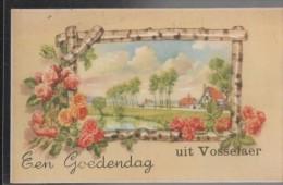Vosselaer - Vosselaar
