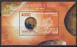 Sheet II, Indonesia Sc1851 Silicified Coral - Fossili