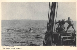 ¤¤   -   GRENLAND   -   La Pêche à La Baleine   -   ¤¤ - Dänemark