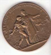 Médaille CERES ENSEIGNE L' AGRICULTURE - Other